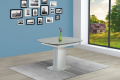 GALEA_TABLE_1